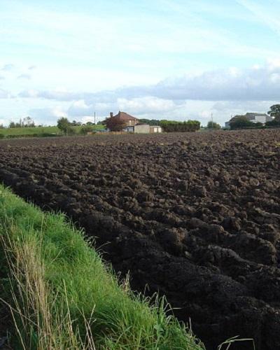 استفاده از خاک لومی در کشاورزی