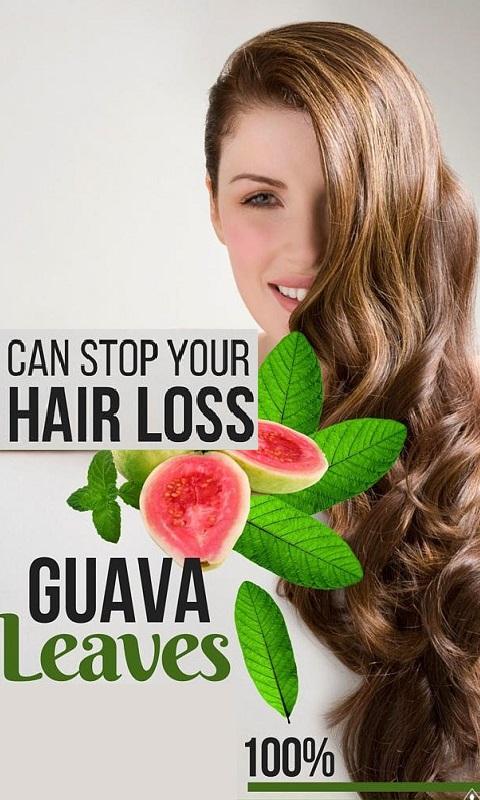 استفاده از برگ گواوا برای رفع ریزش مو