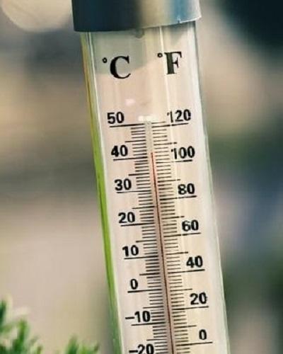 دمای مناسب برای خیار گلخانهای