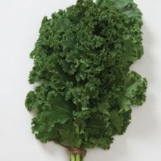 بذر کلم کیل سبز Nash's