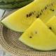 بذر هندوانه زرد