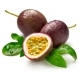 بذر پشن فروت ارغوانی یا میوه گل ساعتی