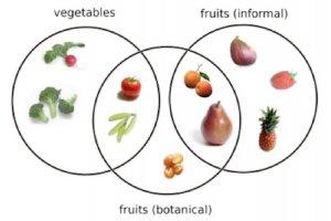 گوجه میوه است یا سبزی؟