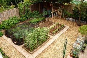 نکات هوشمندانه در باغبانی