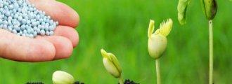 نقش عناصر غذایی در گیاهان