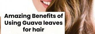 درمان ریزش مو و رشد مجدد مو با برگ گواوا