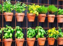 آموزش ساخت باغچه عمودی