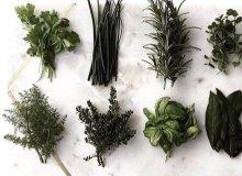 خواص سبزیجات برای سلامتی