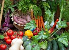 زمان کاشت سبزیجات در بهار