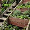 ایده هایی برای پله های حیاط