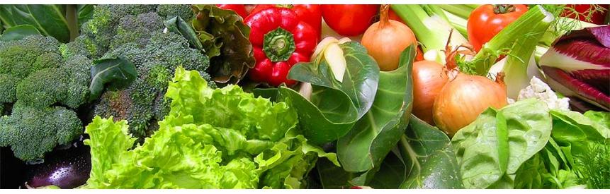 بذر سبزی و صیفی