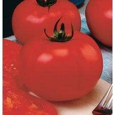 بذر گوجه فرنگی بیف بزرگ F1