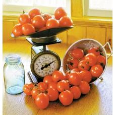 بذر گوجه فرنگی ستاره زنگوله ای ارگانیک