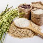 برنج خوب چه برنجی است؟