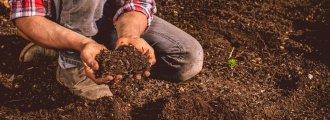 خاک لومی چیست؟