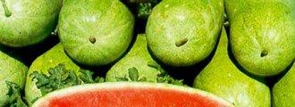 بذر هندوانه چارلستون گری F1