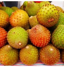 بذر میوه کوپایو