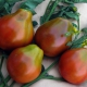 بذر گوجه فرنگی سیاه ژاپنی ارگانیک