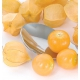 بذر فیسالیس زرد Goldie ارگانیک