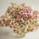 بذر گل فلوکس چری کارامل