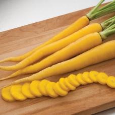 بذر هویج زرد ایرانی