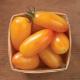 بذر گوجه فرنگی بلوش ارگانیک