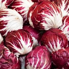 بذر کاسنی قرمز Palla Rossa-3