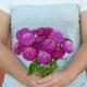بذر گل آهار اوکلاهما کارمین