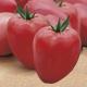 بذر گوجه فرنگی کور دی بو