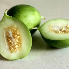 بذر خیار گرد ایتالیایی