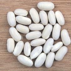 بذر لوبیا سفید لینگوت