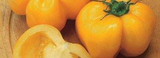 بذر گوجه دلمهای زرد