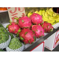 بذر میوه اژدها قرمز