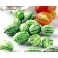بذر هندوانه مینیاتوری