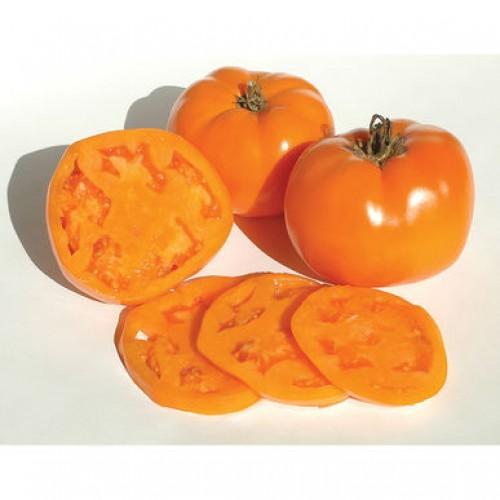 بذر گوجه فرنگی والنسیا