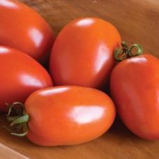 بذر گوجه فرنگی Amish Paste