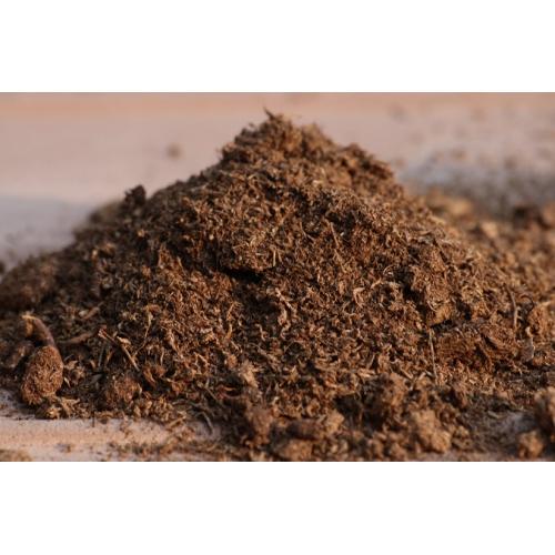 خاک مخصوص گیاهان گوشت خوار