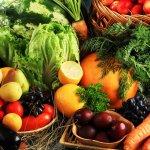 کانال+تلگرام+کشاورزی+ارگانیک