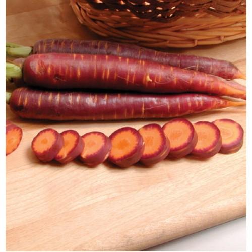 بذر هویج بنفش تار F1