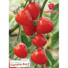 بذر گوجه فرنگی توتفرنگی F1
