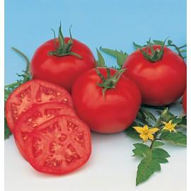 بذر گوجه فرنگی مسکویچ ارگانیک
