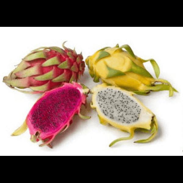 بذر میوه اژدها میکس