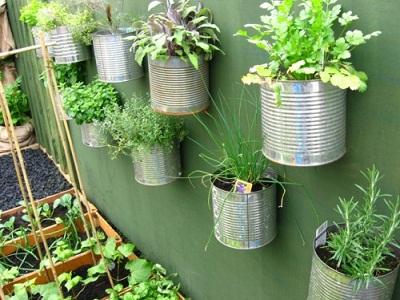 ایده های نگه داری سبزیجات در خانه