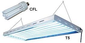 لامپ فلورسنتی