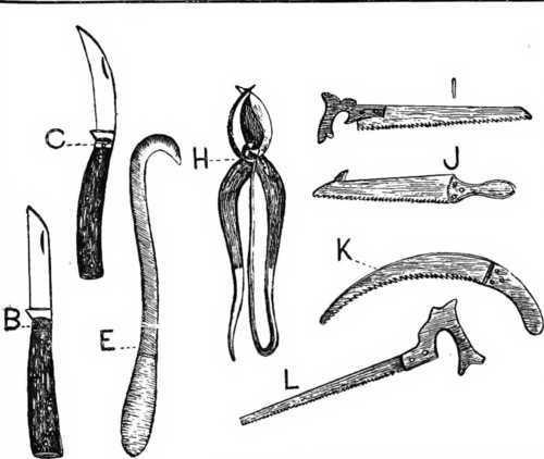 ابزار هرس