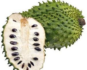 کاشت میوه سورسوپ