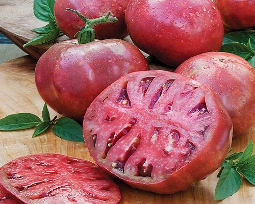 گوجه رنگی بنفش چروک