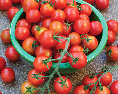 گوجه فرنگی سوپرسوییت