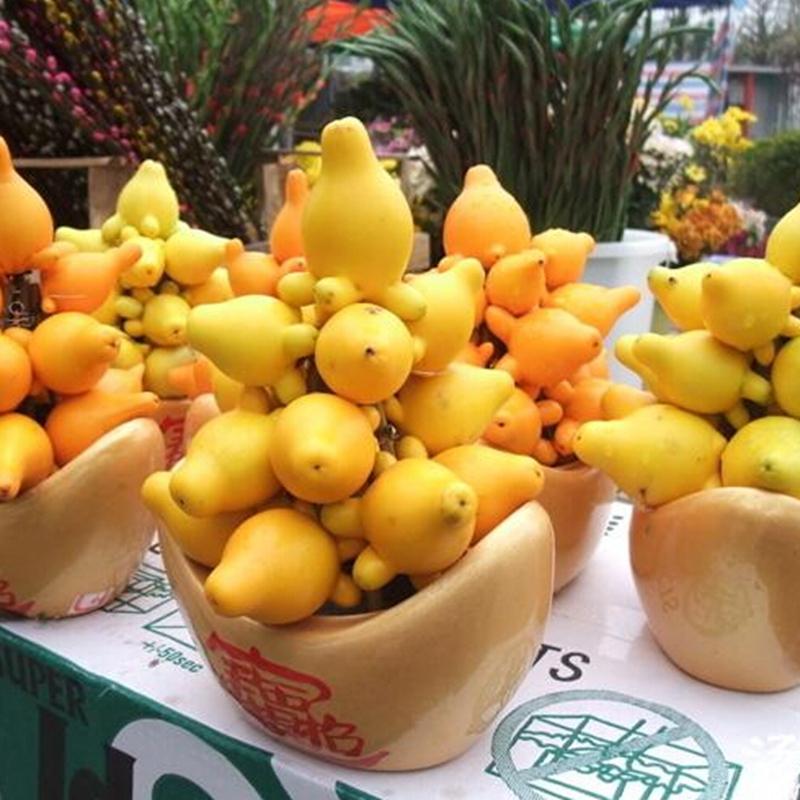 میوه پستانکی