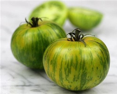گوجه فرنگی سبز راه راه